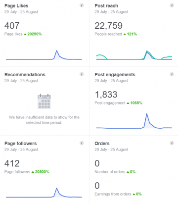 Facebook Marketing Results